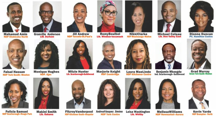 Black candidates turn up at ' meet and greet' event  at Jamaican Canadian Centre