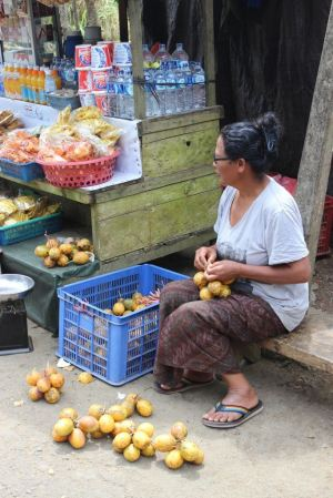 She sold fruits for the monkeys