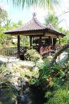 Bali_verkleinert701