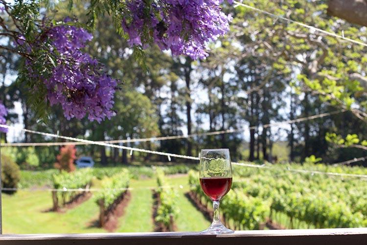 innes-lake-wine-nsw-port-macquarie