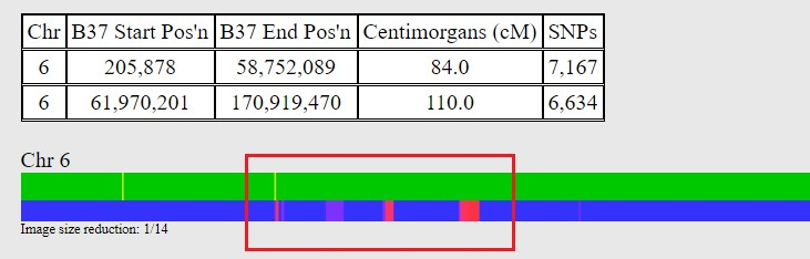 AUDALENE STARR TWO FTDNA GEDMATCH KITS COMPARED P2