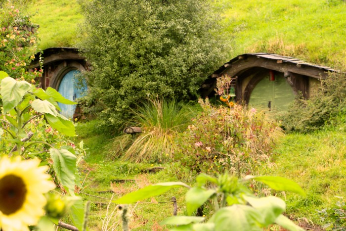 The Shire Hobbiton New Zealand 11