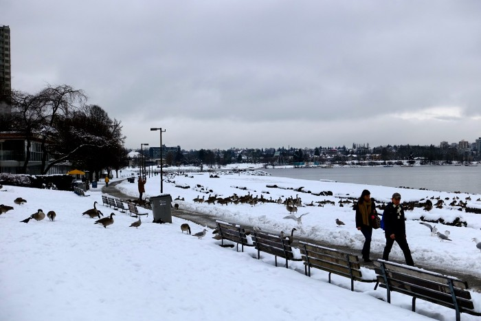 Vancouver Canada in the snow