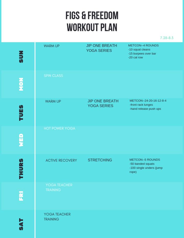 Garage CrossFit Workout Plan 7.28-8.3