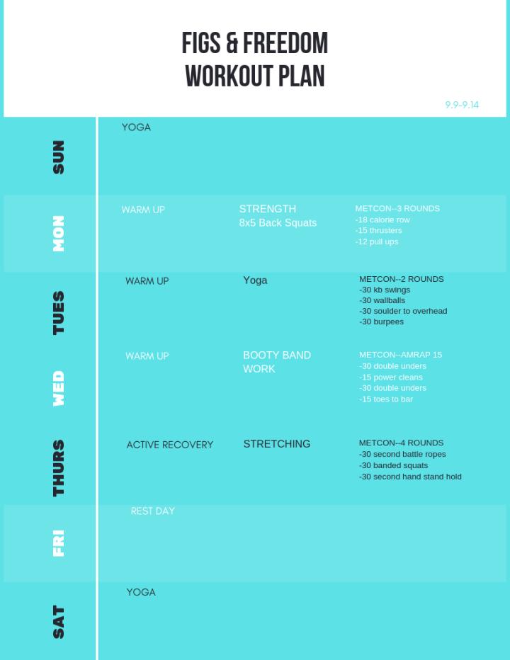 Garage CrossFit Workout Plan 9.9-9.14