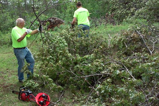 From left, Myron Pauly, deployment coordinator at Catholic United Response, works with another volunteer to clean up fallen trees in the Brainerd area after a storm July 12. Photo courtesy of Catholic United Financial