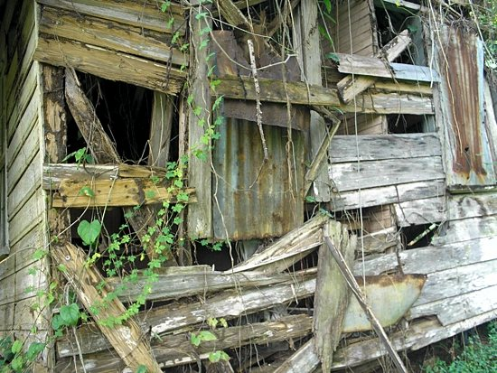 A shack in Maggotty on the list to be rebuilt.