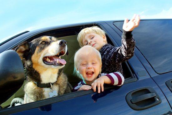 Mini van full of kids and a dog