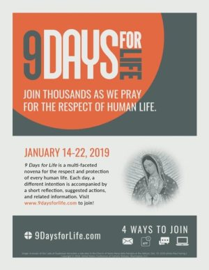 "The U.S. Conference of Catholics Bishops announced Dec. 18 the annual ""9 Days for Life"" prayer and action campaign will run Jan. 14 to Jan. 22. Pictured is promotional material for the campaign."