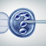 It's not just about the frozen embryos