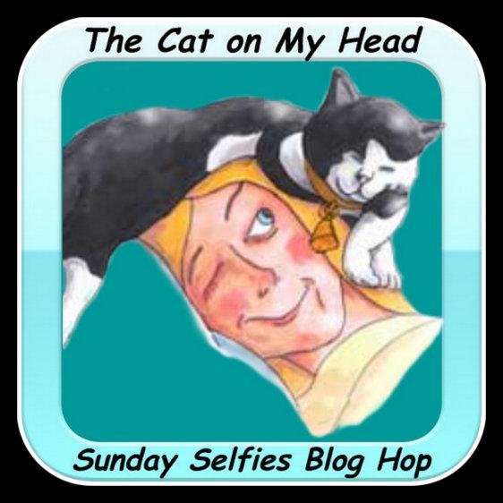 https://i0.wp.com/thecatonmyhead.com/wp-content/uploads/2015/05/Cat4-001.jpg?w=584
