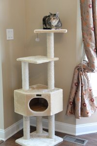 "Cat Trees: 12 Designs That Will Make You Go ""wow ..."