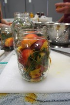 Peaches ready for preserving.