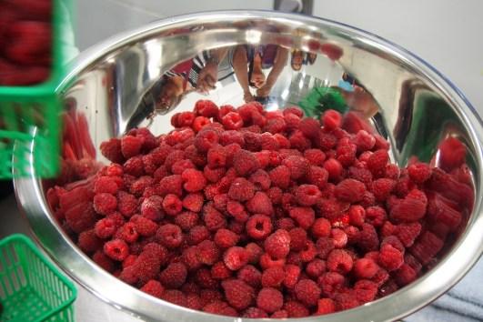 Students and raspberries