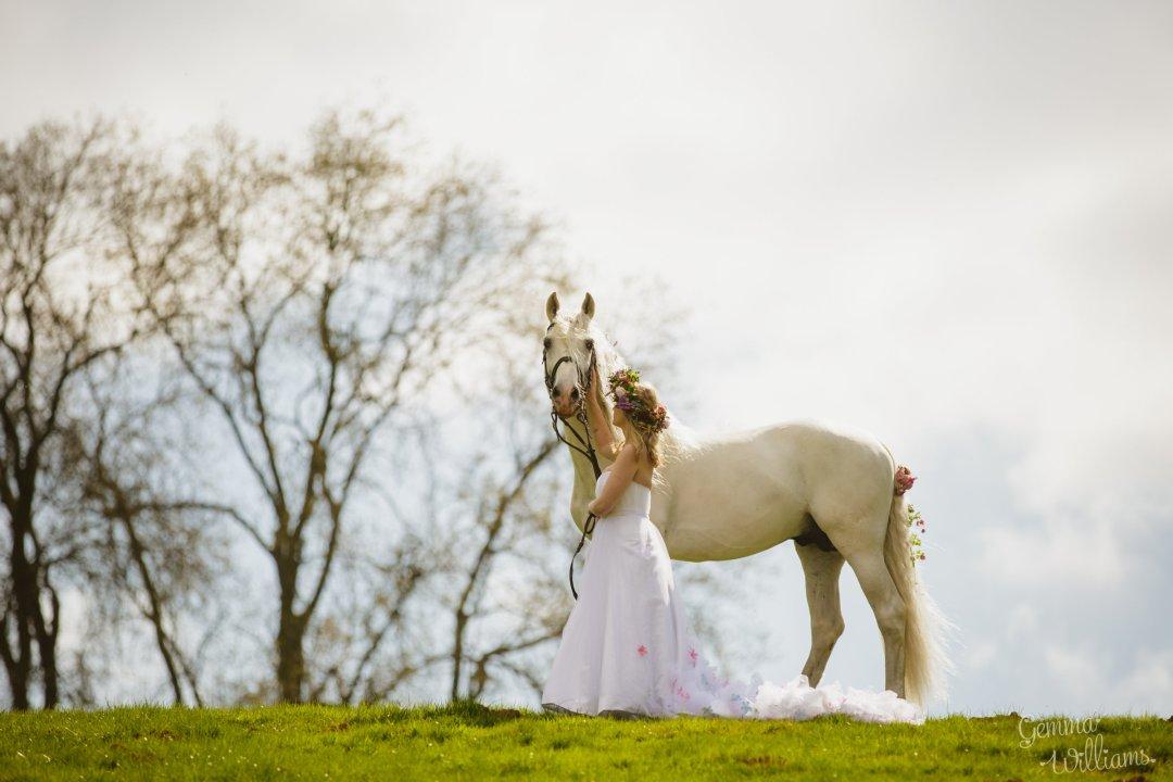 Horseback Arrival
