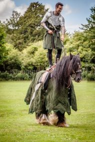 Flavours of Fingal Country Show Dublin Ireland - The Cavalry of Heroes Medieval Jousting Horse Stunt Show - Sir Agravaine standing on Guinness