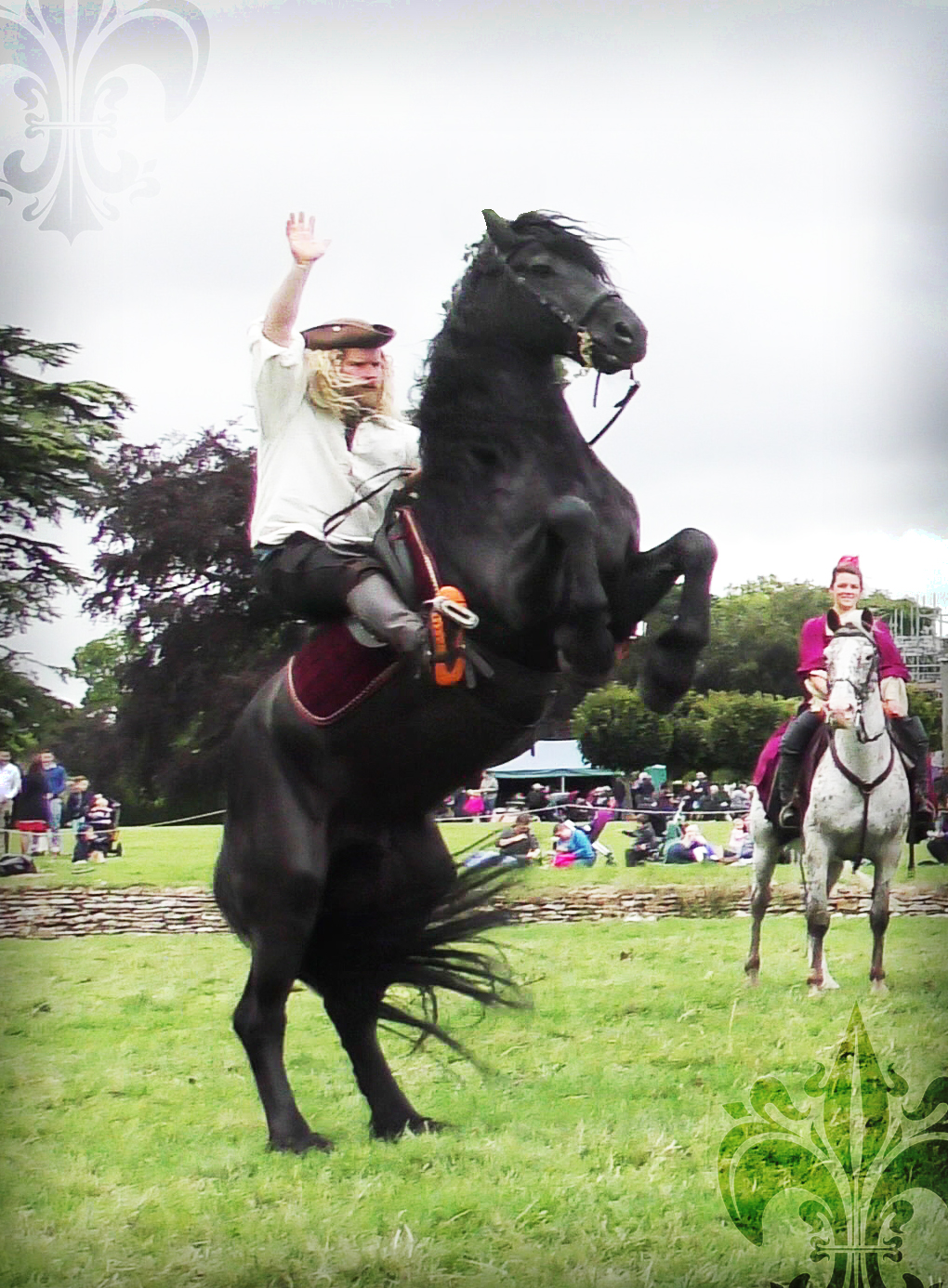The Cavalry of Heroes - Wedding Horse and Carriage, driving horse, country, Herefordshire and Wales