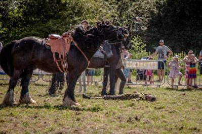 033 The Cavalry of Heroes performing WW1 Trick Riding Horse Show at Kinver Country Fair 2017 Romans, Knights and Highwayman on Horses