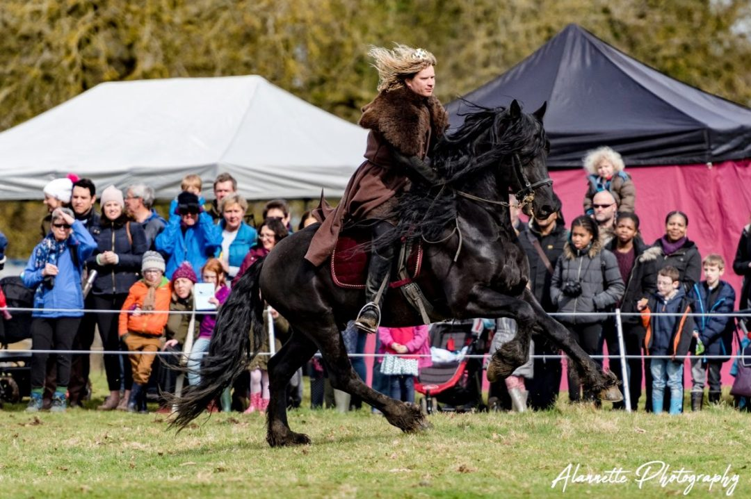 The Golden Knight Sir William Marc Lovatt on horseback jousting at Flavours of Fingal Country Show Dublin Ireland