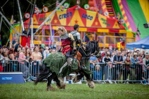 The Cavalry of Heroes performing Medieval Jousting Show at Lambeth Country Show 2017 Knights on Horseback 19