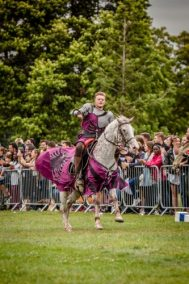 The Cavalry of Heroes performing Medieval Jousting Show at Lambeth Country Show 2017 Knights on Horseback 5