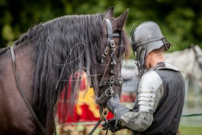 The Cavalry of Heroes performing Medieval Jousting Show at Lambeth Country Show 2017 Knights on Horseback 7