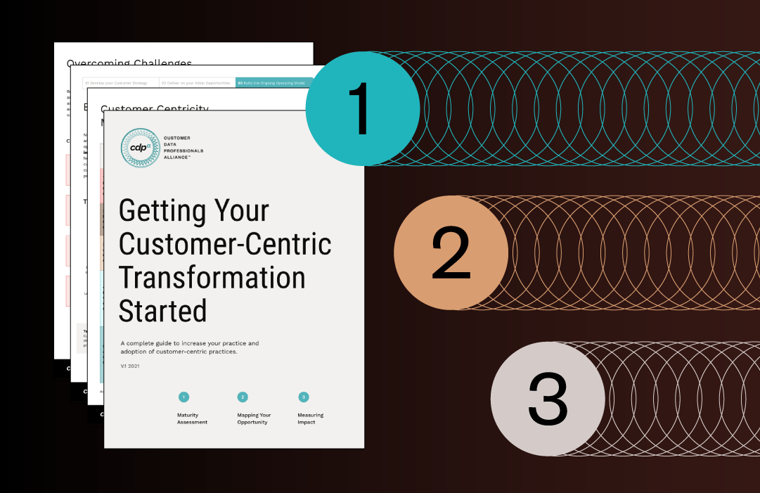 The CDPa's Customer-Centric Transformation Playbook: Mapping and Measuring