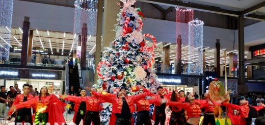 CEB - Christmas at MCIA