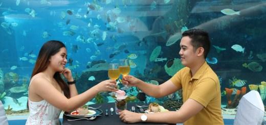 CEB - Depts of Love Ocean Park