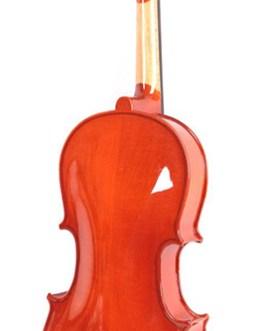 Альт в футляре со смычком, Mirra VA-300-15,5
