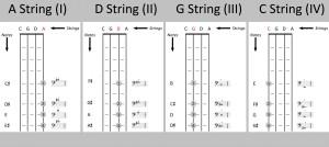 cello position diagram – The Cello Companion