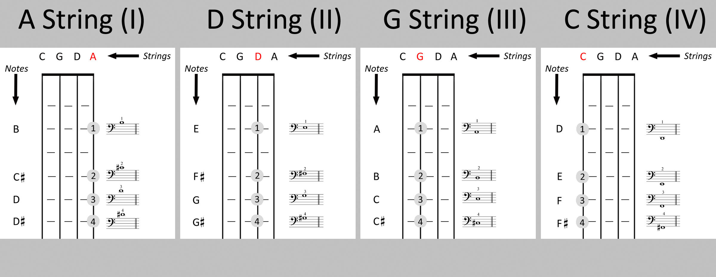 bass neck diagram ford f250 stereo wiring cello stretch position – the companion