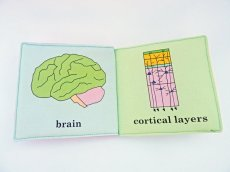 babys-first-neuroscience-book