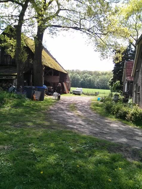 Our little dutch farm