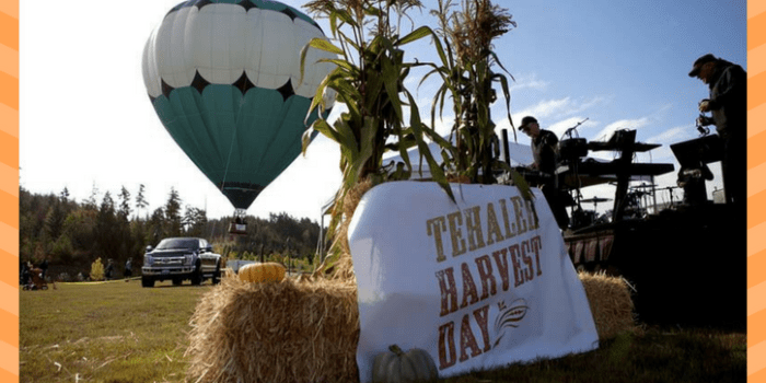 Harvest Festival at Tehaleh