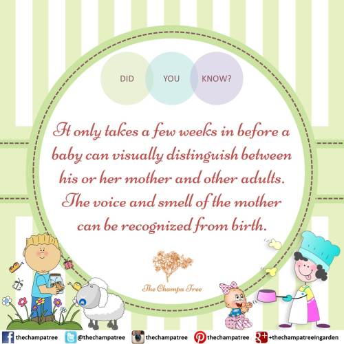 Amazing baby facts - Voice and smell of the mother