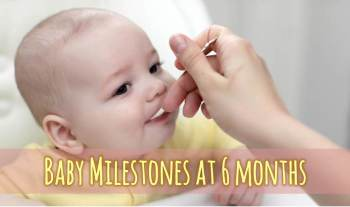 Baby milestones at 6 months