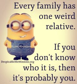 funny minion quotes 4 - Read more on The Champa Tree