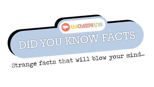Did You Know Facts - Featured