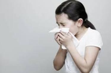 Fight seasonal allergies 06