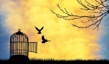 What Does Freedom Mean To Me? – A Child's Outstanding Explanation