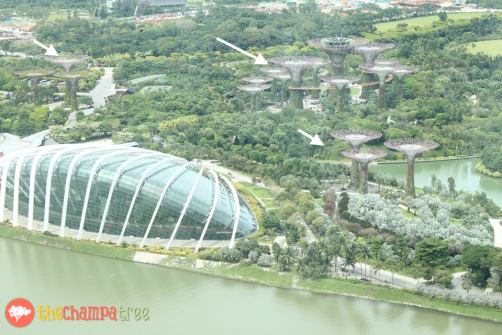 things to do in Singapore with kids 13