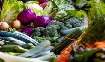 5 Nutritious Winter Foods You Should Eat And Feed Your Family