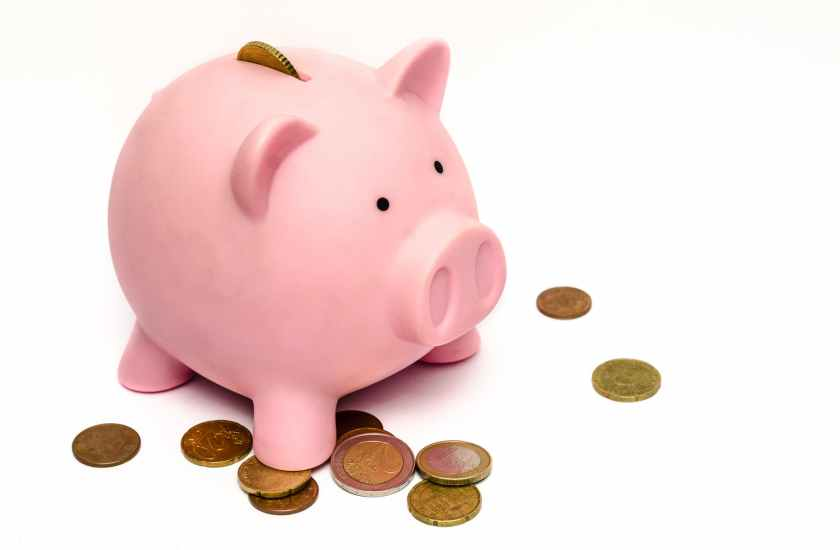 Raising Kids - Piggy Bank