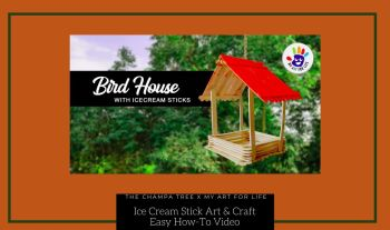 Ice Cream Stick Art And Craft – Bird Feeder And Birdhouse