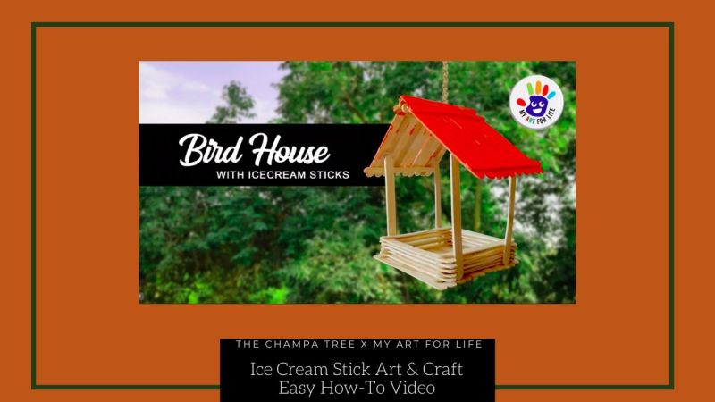 Ice cream stick art and craft bird feeder and bird house