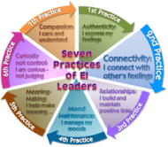 Connectivity - EI Leader Practice 2