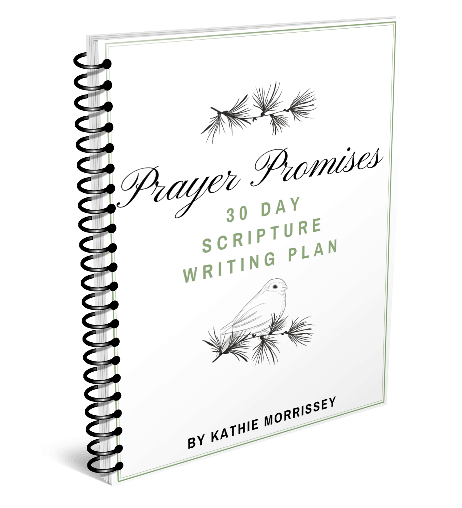 Prayer Promises Free 30 Day Scripture Writing Plan