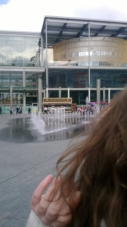 More fountain and library