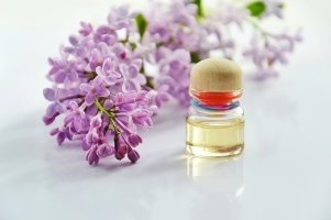 essential-oil, aromatherapy toolkit for artists and writers, pixabay